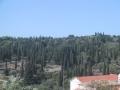 landschap_in_bergen4