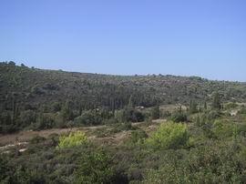 landschap in bergen2